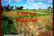 Beautiful LAND IN UBUD BALI FOR SALE TJUB548