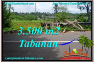 FOR SALE Exotic PROPERTY 3,500 m2 LAND IN TABANAN BALI TJTB298