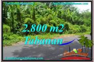 LAND FOR SALE IN Tabanan Kerambitan BALI TJTB300
