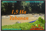FOR SALE Beautiful LAND IN Tabanan Selemadeg BALI TJTB304
