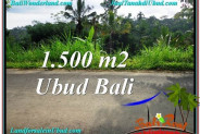 Beautiful 1,500 m2 LAND SALE IN UBUD BALI TJUB556
