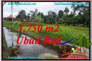 FOR SALE Affordable PROPERTY 715 m2 LAND IN UBUD BALI TJUB557