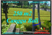 Exotic CANGGU 250 m2 LAND FOR SALE TJCG207