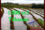 Magnificent PROPERTY TABANAN LAND FOR SALE TJTB261