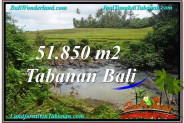 Beautiful PROPERTY 51,850 m2 LAND FOR SALE IN Tabanan Selemadeg TJTB289