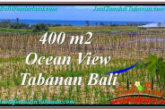 Exotic Tabanan Kerambitan BALI LAND FOR SALE TJTB292