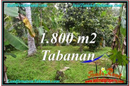 Exotic LAND SALE IN Tabanan Penebel BALI TJTB293
