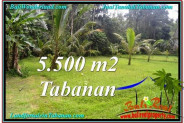 Exotic PROPERTY LAND FOR SALE IN TABANAN TJTB295