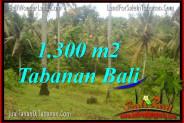 FOR SALE Exotic LAND IN Tabanan Selemadeg TJTB314