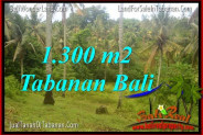 FOR SALE Magnificent LAND IN Tabanan Selemadeg TJTB314