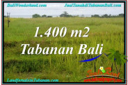 Magnificent PROPERTY 1,400 m2 LAND FOR SALE IN TABANAN BALI TJTB309