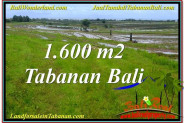 Exotic PROPERTY TABANAN BALI LAND FOR SALE TJTB310