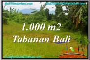 Exotic LAND SALE IN Tabanan Selemadeg BALI TJTB311