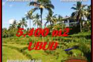 Magnificent PROPERTY 5,400 m2 LAND FOR SALE IN Ubud Tegalalang BALI TJUB550