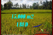 Magnificent PROPERTY 15,000 m2 LAND FOR SALE IN Ubud Tegalalang BALI TJUB551