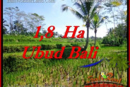 Magnificent PROPERTY LAND FOR SALE IN UBUD BALI TJUB553