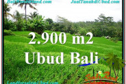 Beautiful UBUD BALI 2,900 m2 LAND FOR SALE TJUB564
