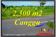 Affordable LAND SALE IN Canggu Echo Beach TJCG209