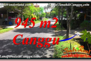 Beautiful PROPERTY LAND SALE IN Canggu Pererenan BALI TJCG210