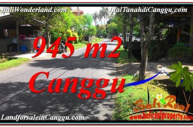 945 m2 LAND SALE IN Canggu Pererenan BALI TJCG210