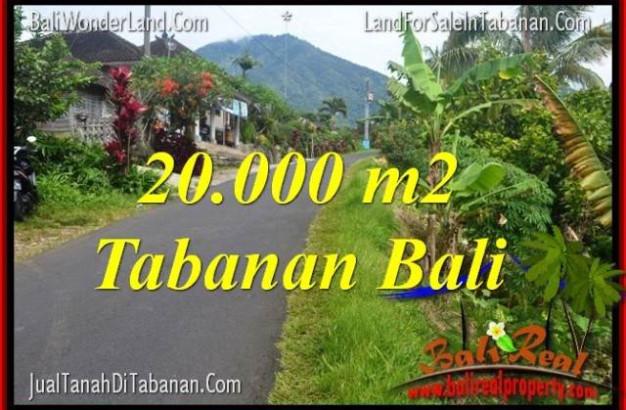 Affordable LAND IN TABANAN FOR SALE TJTB315