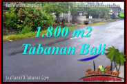 Magnificent PROPERTY LAND SALE IN TABANAN TJTB321