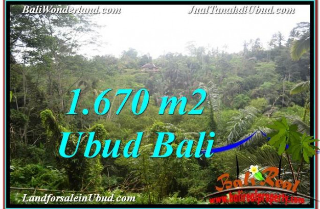 1,670 m2 LAND FOR SALE IN UBUD BALI TJUB569
