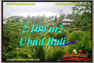 Exotic LAND SALE IN Ubud Payangan BALI TJUB572