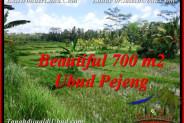 Magnificent 700 m2 LAND FOR SALE IN Ubud Pejeng TJUB534