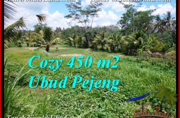 Beautiful 450 m2 LAND IN Ubud Pejeng FOR SALE TJUB535