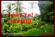 Beautiful 579 m2 LAND IN Ubud Tegalalang FOR SALE TJUB538