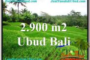 Affordable 2,900 m2 LAND FOR SALE IN UBUD BALI TJUB564