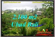 Exotic PROPERTY 2,100 m2 LAND FOR SALE IN Ubud Payangan TJUB572