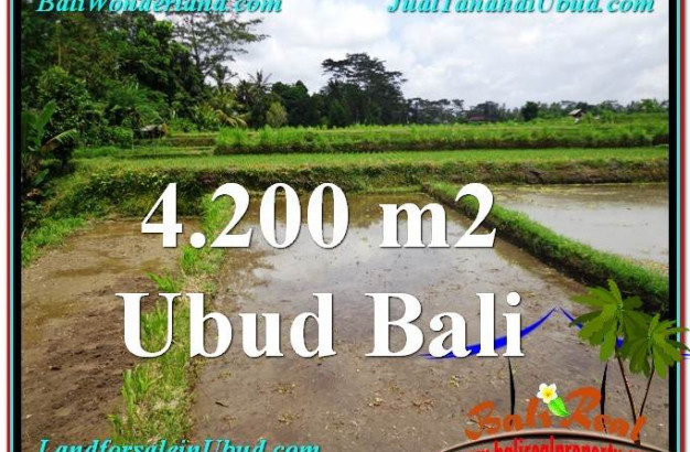 Beautiful 4,200 m2 LAND FOR SALE IN Ubud Tampak Siring TJUB561