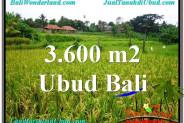 Magnificent 3,600 m2 LAND SALE IN UBUD BALI TJUB566
