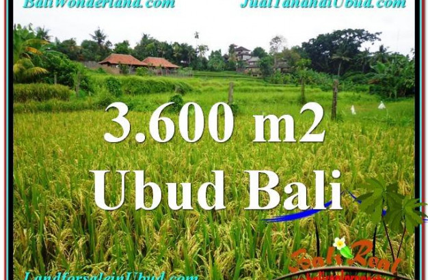 Magnificent 3,600 m2 LAND SALE IN UBUD BALI TJUB566