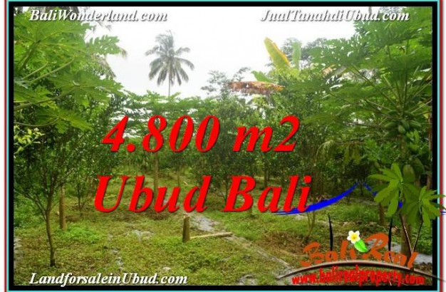 Magnificent UBUD LAND FOR SALE TJUB571