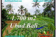 Magnificent PROPERTY LAND IN UBUD BALI FOR SALE TJUB560