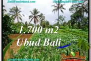 FOR SALE Exotic 1,700 m2 LAND IN UBUD BALI TJUB560