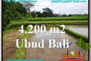 Affordable 4,200 m2 LAND SALE IN UBUD BALI TJUB561