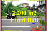 Magnificent PROPERTY 2,200 m2 LAND FOR SALE IN Sentral Ubud BALI TJUB565