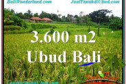 3,600 m2 LAND IN UBUD BALI FOR SALE TJUB566
