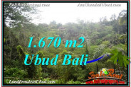 FOR SALE Exotic PROPERTY 1,670 m2 LAND IN Ubud Payangan TJUB569