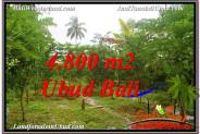 Beautiful PROPERTY 4,800 m2 LAND IN Ubud Payangan BALI FOR SALE TJUB571