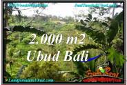 LAND FOR SALE IN UBUD TJUB573