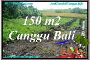 Beautiful 150 m2 LAND IN CANGGU FOR SALE TJCG213