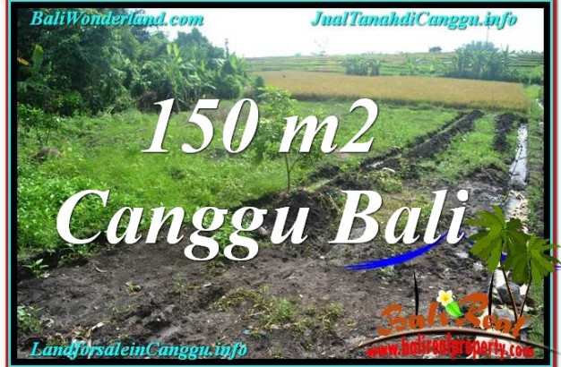 Beautiful 150 m2 LAND IN CANGGU FOR SALE TJCG213
