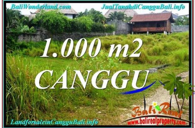 Affordable PROPERTY CANGGU 1,000 m2 LAND FOR SALE TJCG214