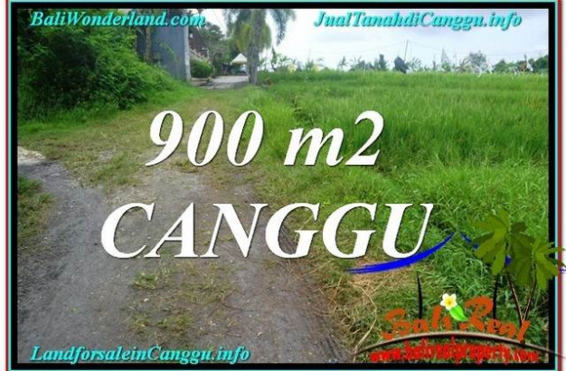 FOR SALE 900 m2 LAND IN Canggu Batu Bolong  BALI TJCG215