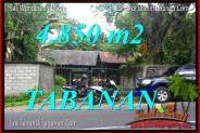 FOR SALE Affordable PROPERTY 4,850 m2 LAND IN Tabanan Bedugul TJTB330